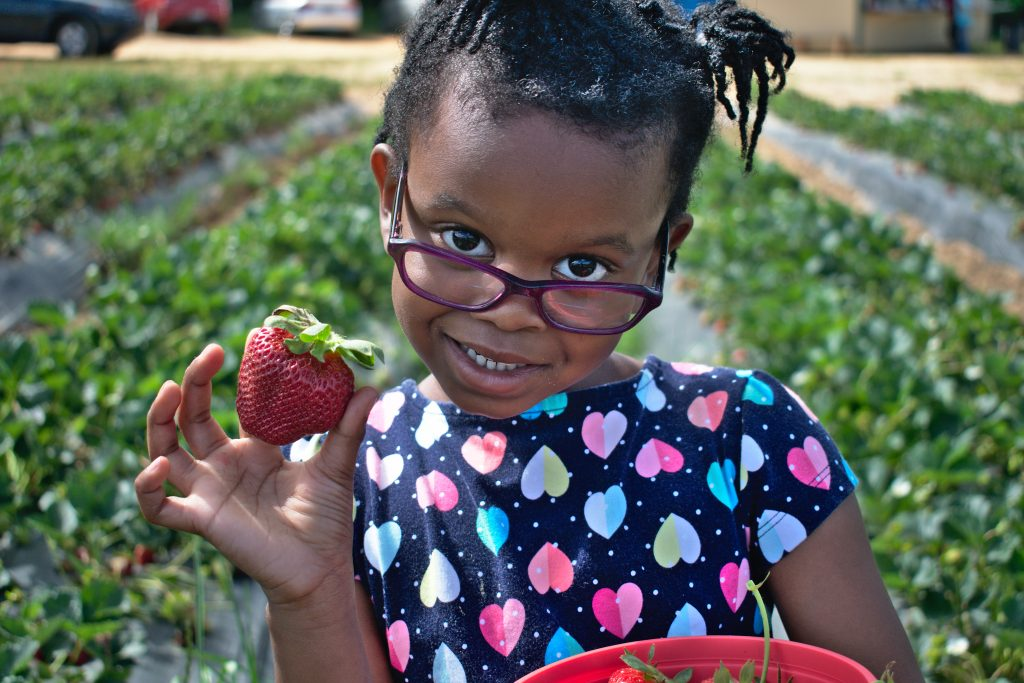 Strawberry Fields Forever - 7 Yummy Strawberry Dishes